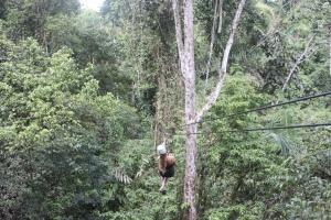 Tori ziplining