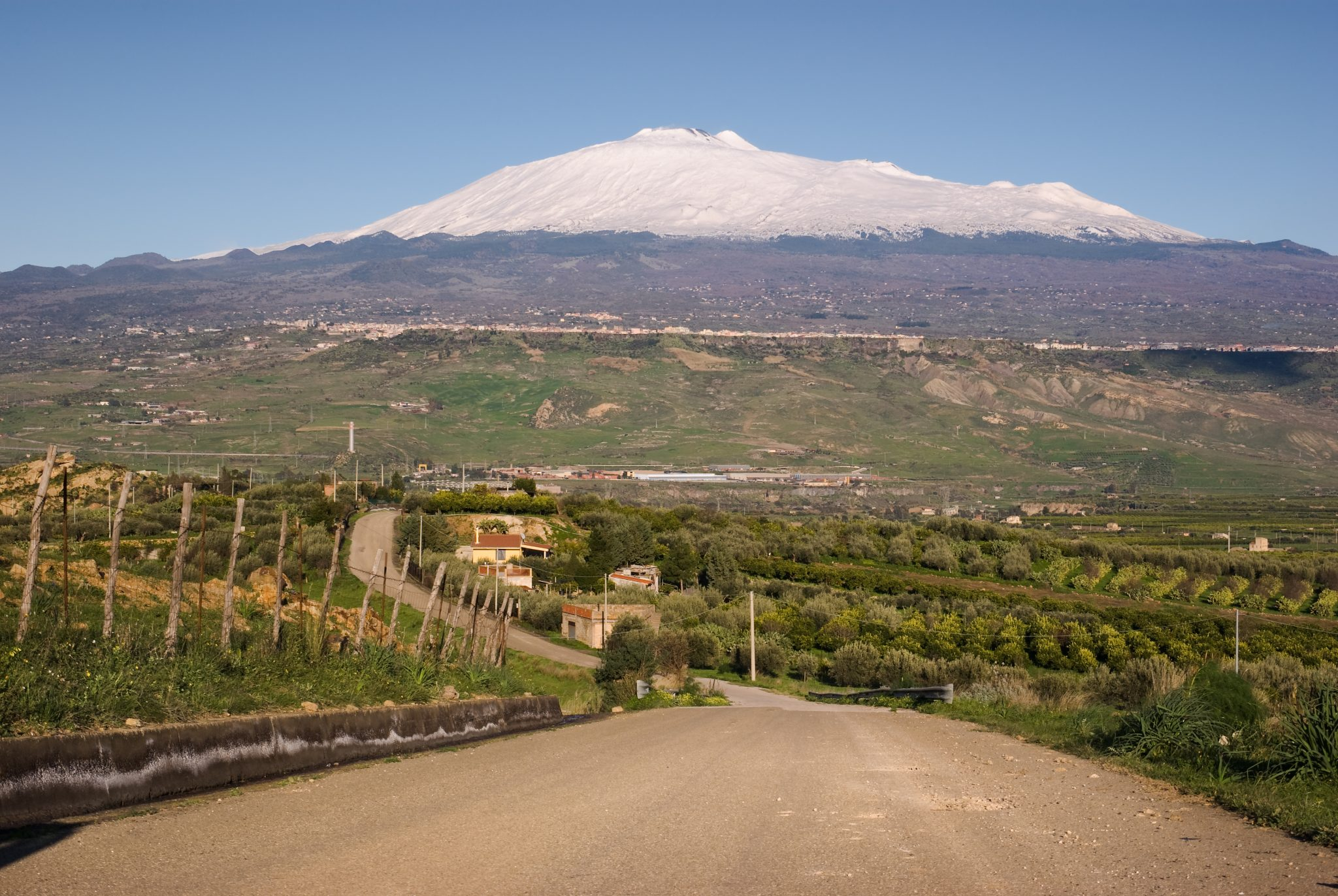 Mount Etna Vineyard